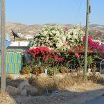 Beit Maqdum