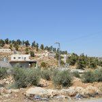 Wadi al Shajni