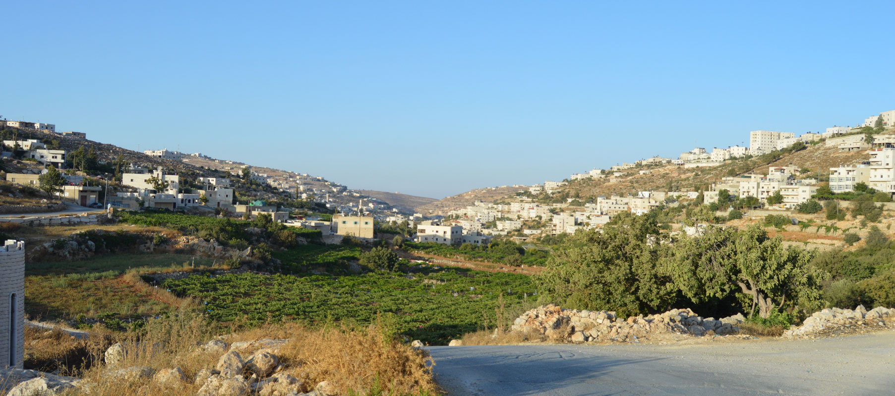 Sa'ir, Palestine