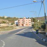 Araqa---1-of-4